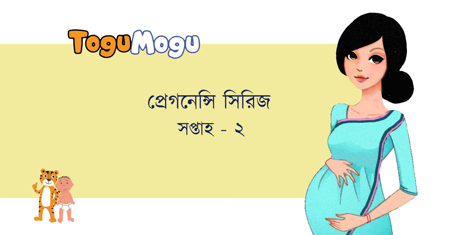 ToguMogu Pregnancy Series: সপ্তাহ ২